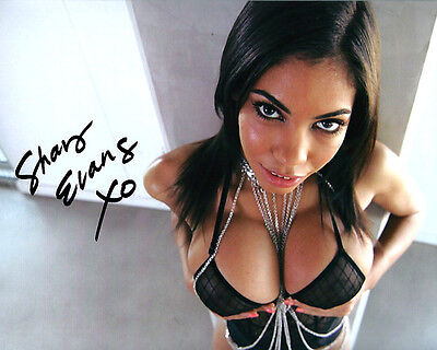 Busty Adult Film Star SHAY EVANS close signed photo!