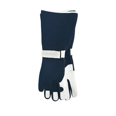 Annabel Trends Sprout Sage Ladies Goatskin Gloves | Garden House *free Delivery