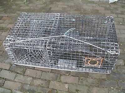 Commercial Lobster Trap - Pick up in Oceanport, NJ
