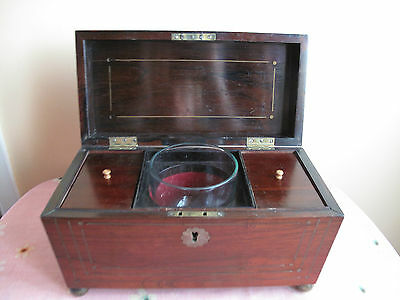 Antique GEORGIAN ROSEWOOD Hardy Marshall Sarcophagus Tea Caddy Lion Mask Handle