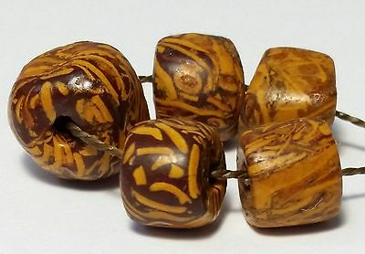 5 Ancient Rare Fossil Stone Beads