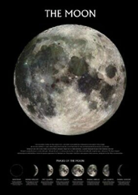 New Phases of The Moon Poster
