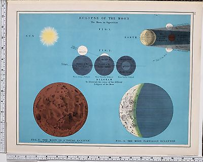 1889 Large Antique Astronomy Print ~ Eclipse Of The Moon ~ Earth Sun Total