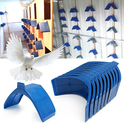 10/20pcs Blue Plastic Pigeon Dove Birds Rest Stand Frame Dwelling Perch Roost