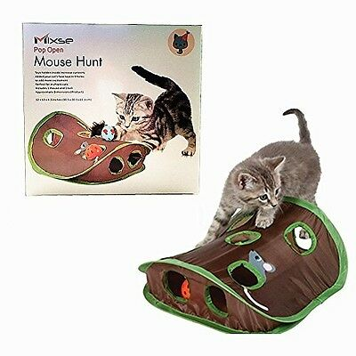 Cat Toy Toys Mouse Hunt Mixse Pop Open Hunt Hunting Maze Senses Ball Chase