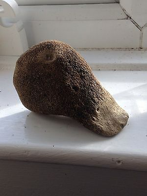 Quality  paleo/ Mesolithic worked bone duck effigy hand axe /wedge tool