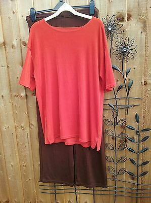 Ladies Bundle Brown Trousers And Tan Top Size 18/20