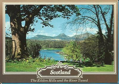 Whiteholme Postcard - THE EILDON HILLS AND THE RIVER TWEED, THE SCOTTISH BORDERS