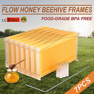 7Pcs Automatic Flow Honey Beehive Frames Kit Easy Quality 2017 NEWEST Food-grade
