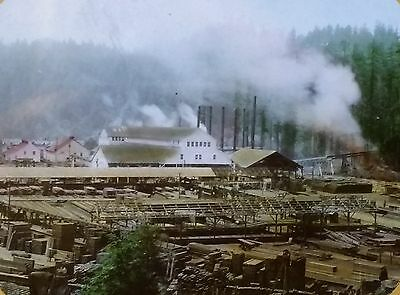 Pacific Lumber Company Mill, Scotia, California, Magic Lantern Glass Slide