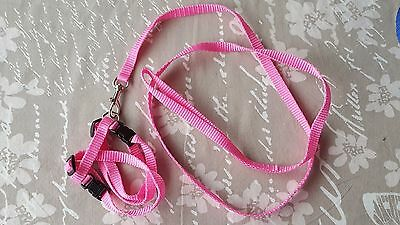 Cat Walking Lead Dog Leash Adjustable Harness Collar Pet Kitten Puppy - Pink