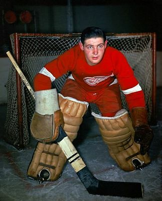 Terry Sawchuk Detroit Red Wings 8x10 Photo