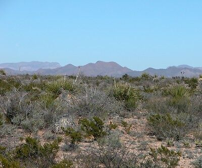 26.6 Acres in Gunsight Ranch. Hudspeth County, Texas, $160/month, 0% Interest