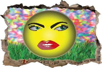 Emoji Smiley Face Smashed Wall Sticker Graphic Decal Home Decor Art Mural J223