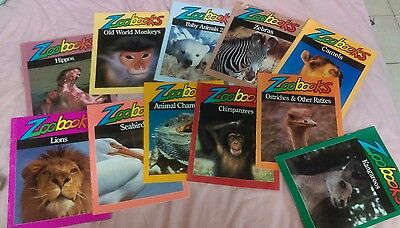Zoobooks Lot (11 magazines in all)
