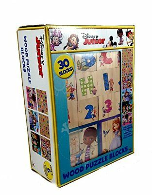 Disney Wood Puzzle Blocks Create 6 Different Puzzles Including Alphabet and Numb