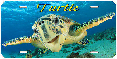 Turtle Any Text Personalized Novelty Car License Plate P03