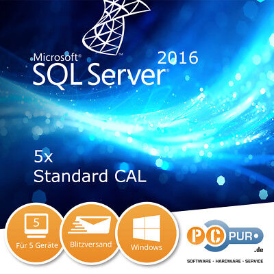 MS Microsoft SQL Server 2016 (5 Nutzer) User CAL