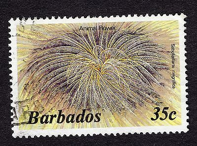1985 Barbados 35c Animal flower SG800a FINE USED R31776