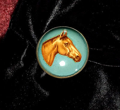 Rare Antique Brass Brooch Pin Horse Head Dome Glass Bridle Rosette Pin Brooch