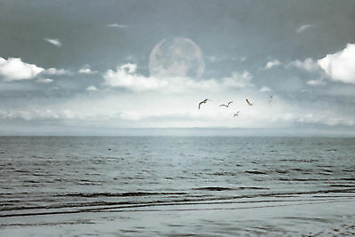 Highland Dunes 'By the Blue - Ocean and Moon' Photographic Print on Canvas