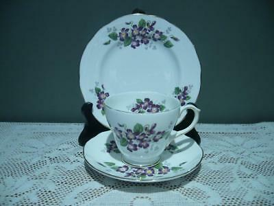 Vintage Duchess Bone China Violetta Trio - Cup Saucer Plate - High Tea - Vgc