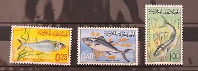 Morocco Africa 1967 Fishes Set MNH SG194-196