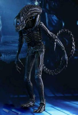 "Alien - Alien Warrior 12"" 1:6 Scale Action Figure - Hot Toys"