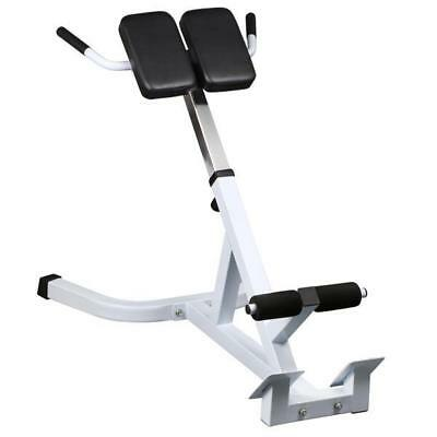 45 Degree Extension Hyperextension Roman Chair Back Abdominal Exercise Bench