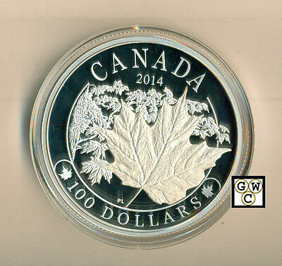 2014 'Majestic Maple Leafs' Proof 10oz $100 Silver Coin .9999 Fine (14047)(OOAK)