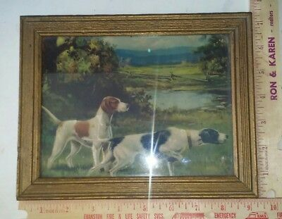 old hunting dog picture
