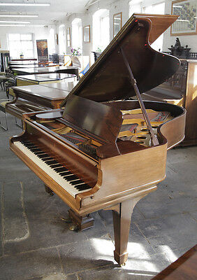 A 1905, Steinway Model O grand piano with a rosewood case. 12 month warranty