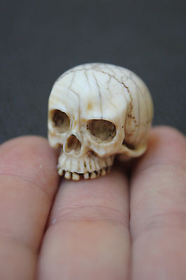 Antique Hand Carved Ojime Skull 19th Century