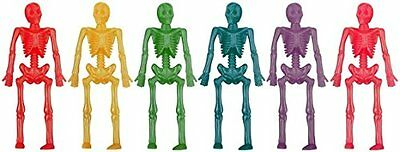 Assorted Colour Neon Stretchy Skeleton - PACK OF 12