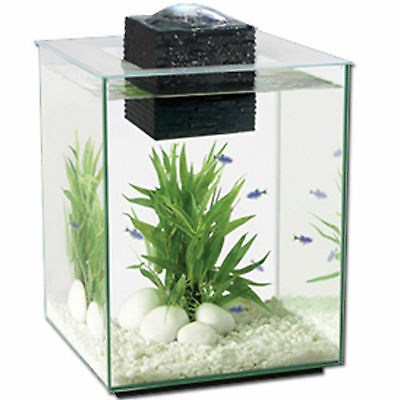 Nano Aquarium Fish Tank Children Fluval Chi 2 Indoor Aquatics New 19L