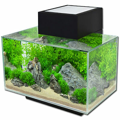 Aquarium Nano Fish Tank Fluval Edge Led Black Gloss Indoor Aquatics New 23L