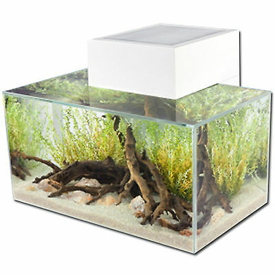 Aquarium Nano Fish Tank Fluval Edge Led White Gloss Indoor Aquatics New 23L