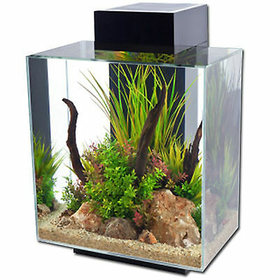 Aquarium Nano Fish Tank Fluval Edge Led Black Gloss Indoor Aquatics New 46L