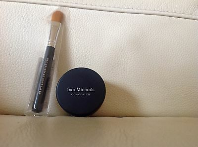 Bareminerals concealer and brush