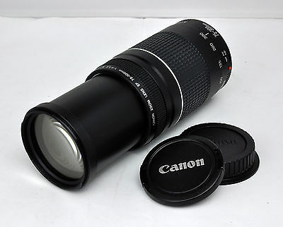 Canon EF 75-300mm f/4-5.6 III Zoom Lens for EOS Rebel T6i T5i T3i T1i XSi 60D