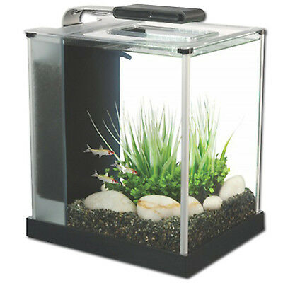 Aquarium Nano Fish Tank Fluval Spec Black LED Indoor Aquatics New 10L