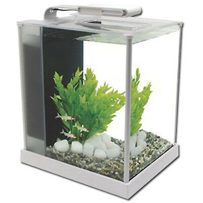 Aquarium Nano Fish Tank Fluval Spec White LED Indoor Aquatics New 10L