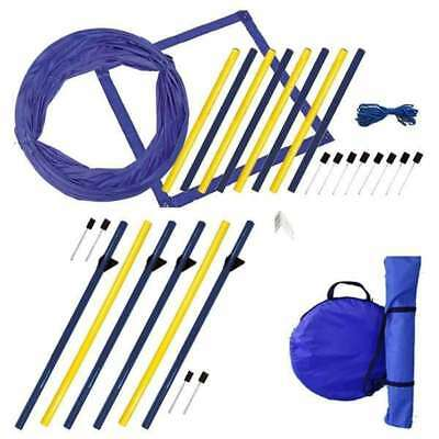 Dog Agility XXL Starter-Set