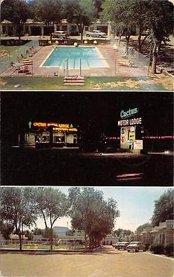 Cactus Motor Lodge Tucumcari, New Mexico Route 66 Roadside NM Postcard 1959