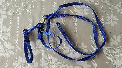 Cat Walking Lead Dog Leash Adjustable Harness Collar Pet Kitten Puppy - Blue