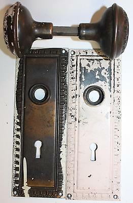 Antique Brass Egg & Dart Backplates and Door Knobs Architectural Salvage