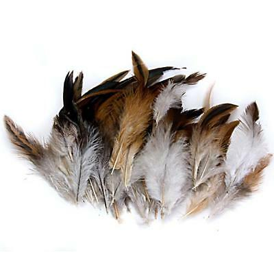 50pcs Natural Rooster Cock Feather Hat Fascinator Costume DIY Craft 2-6 inch