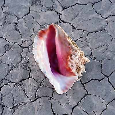 The Killers 'wonderful Wonderful' Deluxe Edition Cd (2017)