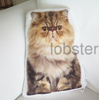CAT PILLOW Fluffy Tan Ivory Brown Photograph on fabric 14 inch zipper cover