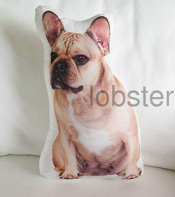 FRENCHIE DOG PILLOW French Bulldog Photograph on fabric 14 inch w zipper cover